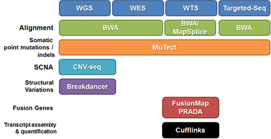 WGS-WES-WTS-Targetted-Seq
